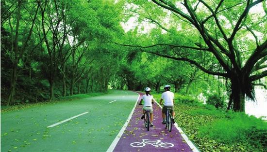 五月来一场说走就走的骑行 金华最美绿道都在这里